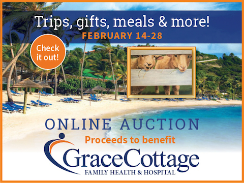 Grace Cottage Cabin Fever Auction